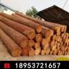 供应进口松木 园林防腐松木 矿用枕木