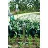 土壤紧实度测定仪使用说明和效果分析
